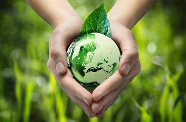 eco-friendly-marketing-developpement-durable